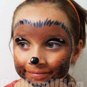 Sündisznó-arcfestés